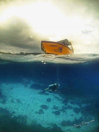 Sandy Bay, Honduras: our boat