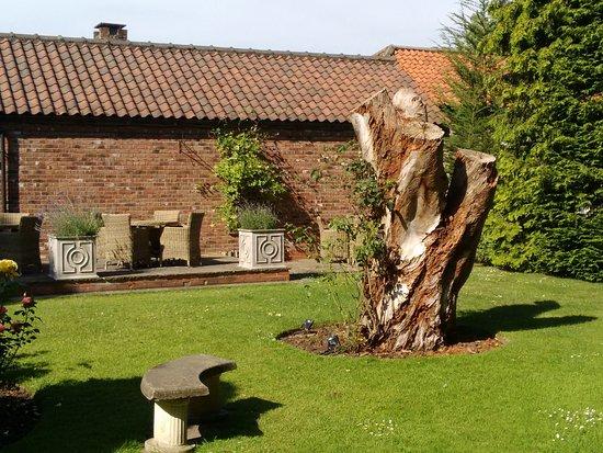 Tickton, UK: garden