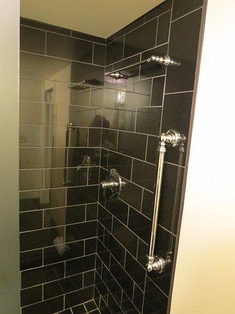 Hotel Le Marais : Walk in shower