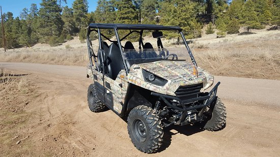 Williams Forest Trails ATV Rentals