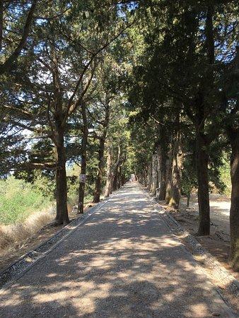 Филеримос, Греция: Дорога на Голгофу