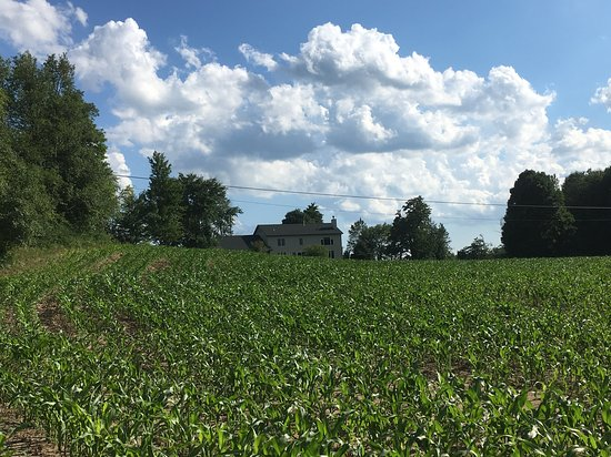 Potsdam, Nowy Jork: View from the field towards the house