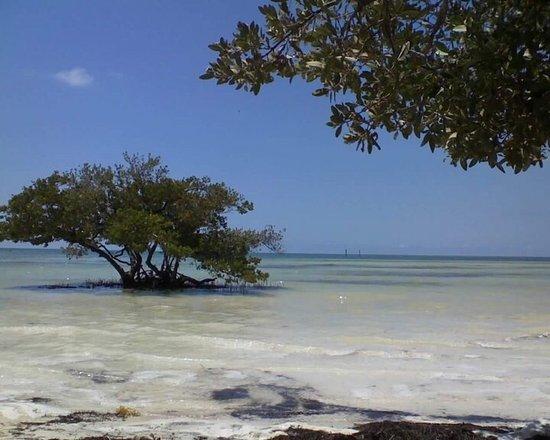 Anne's Beach: photo0.jpg