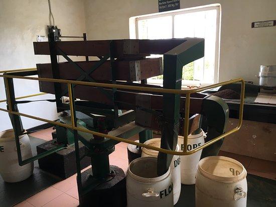 Heritance Tea Factory: photo6.jpg