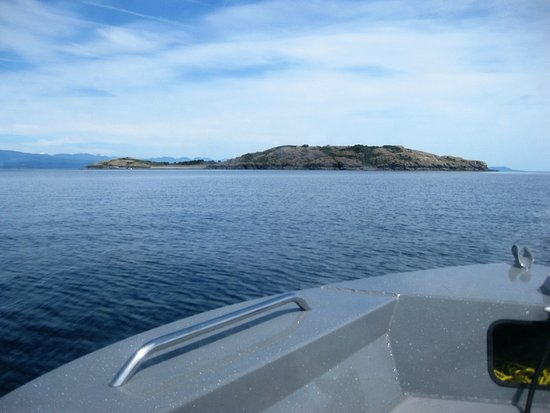 Mansons Landing, Canadá: Approaching the island.