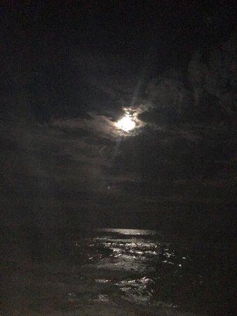 Emerald Isle: photo2.jpg