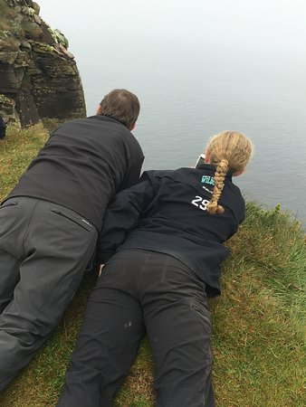 Latrabjarg, Islandia: Don't walk to the edge of the cliffs -- there is a big fall risk -- lay down and crawl.