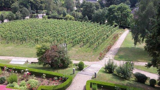 Geisenheim, Almanya: Aussicht aus dem zweiten Stock, Kategorie Klassik+