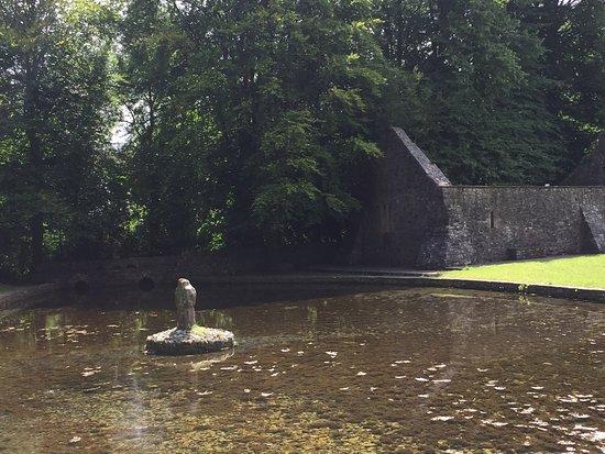St. Patrick's Well: photo0.jpg