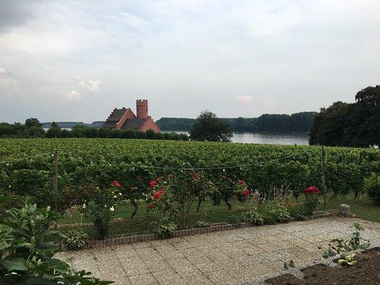 Eltville am Rhein, เยอรมนี: photo0.jpg