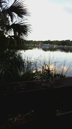 Lake Dora: 20160719_194919_large.jpg
