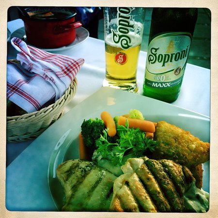Mosonmagyarovar, Hongrie : Traditional Hungarian food close to Thermal pools.