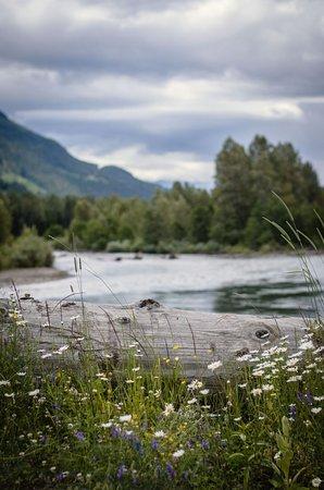 Kaslo, كندا: Lardeau Scenery