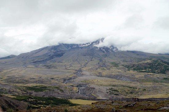 Toutle, Вашингтон: Mount St. Helens hiding behind the clouds