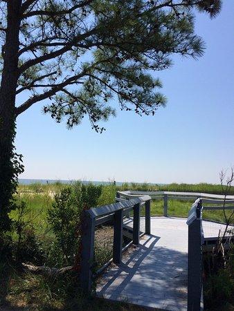 Reedville, VA: Solitude on a summer Saturday morning.