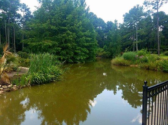 Botanical Garden Picture Of Cape Fear Botanical Garden Fayetteville Tripadvisor