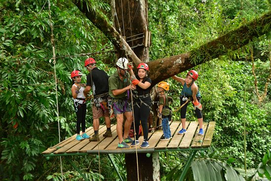 Quepos, Costa Rica: Tarzan swing!