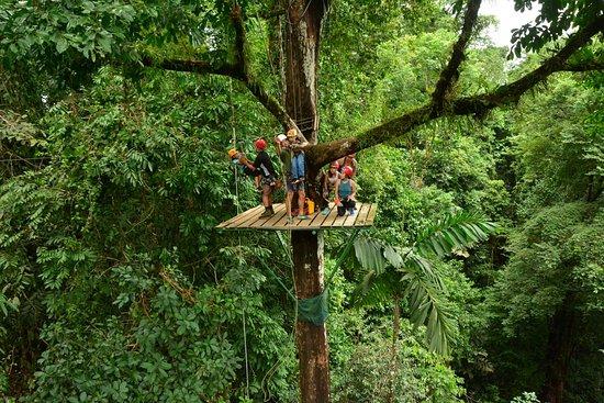 Quepos, Costa Rica: Up and away! Mini tarzan!