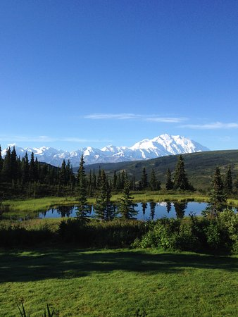 View from Camp Denali dining hall