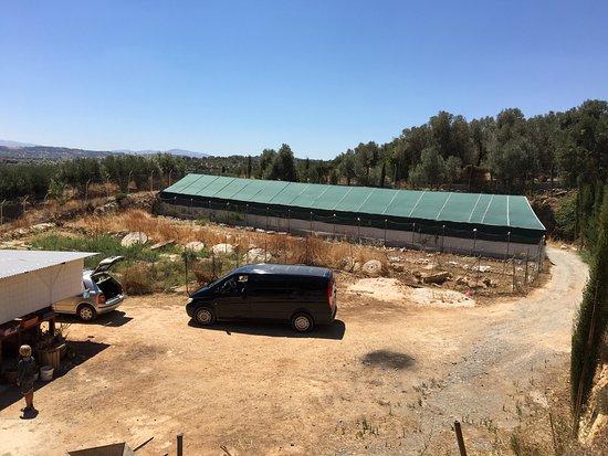 Anogia, Grecia: Lidt fra Kretas spændende landbrug