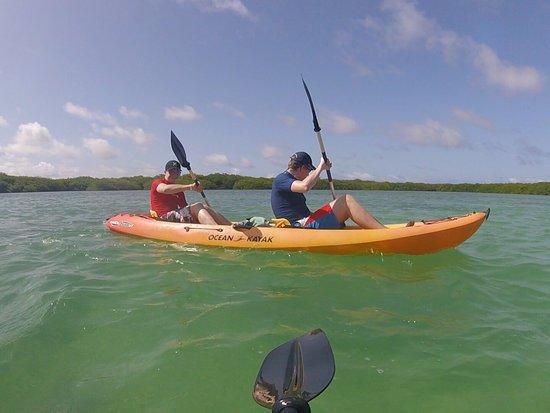 Mangrove Information Center Kayak & Snorkel Excursions: photo0.jpg