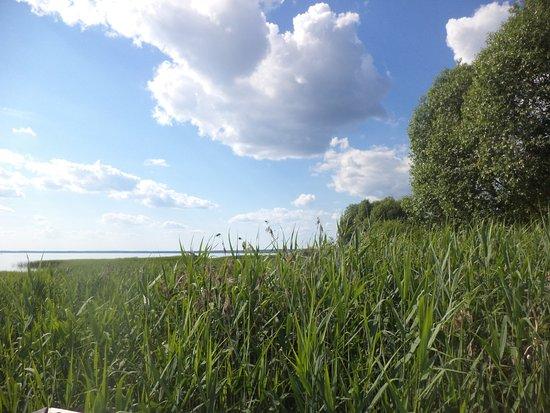 Yaroslavl Oblast, Russland: Плещеево озеро
