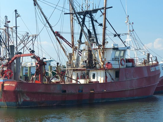 Commercial fishing boat picture of viking village for Viking fishing boats