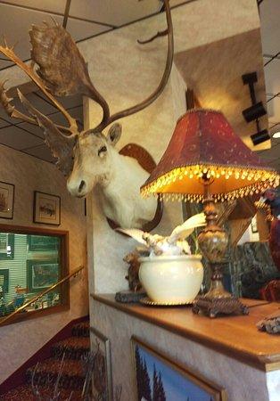 Hotel Seward: IMAG5594_large.jpg