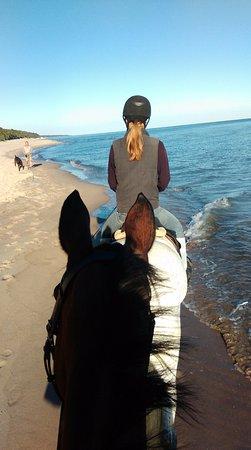 Felek Horse Riding