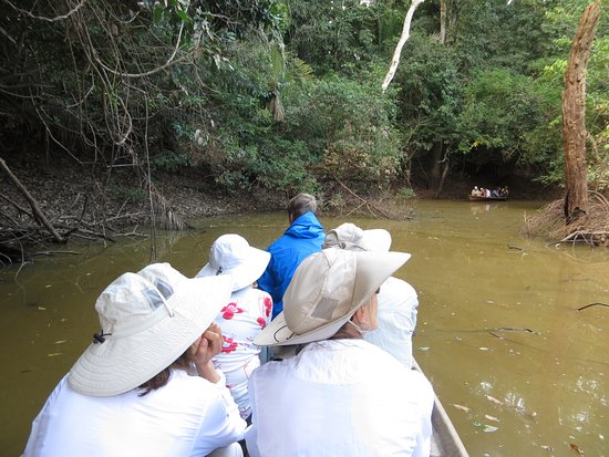 Inkaterra Reserva Amazonica: Excursion