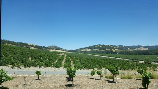 Paso Robles, Kalifornien: View from the tasting room