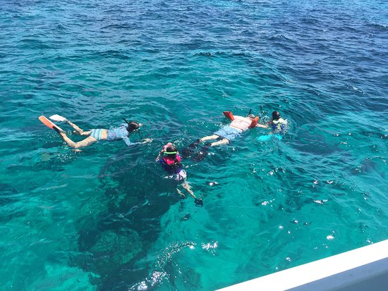 Hope Town, Elbow Cay: Snorkeling over the nat'l park, seeing coral, colorful fish and, yes, a shark