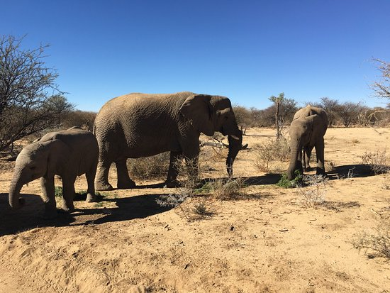 Omaruru, Namibia: photo0.jpg