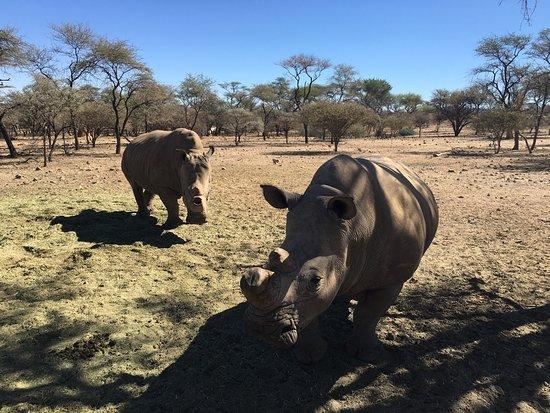 Omaruru, Namibia: photo1.jpg