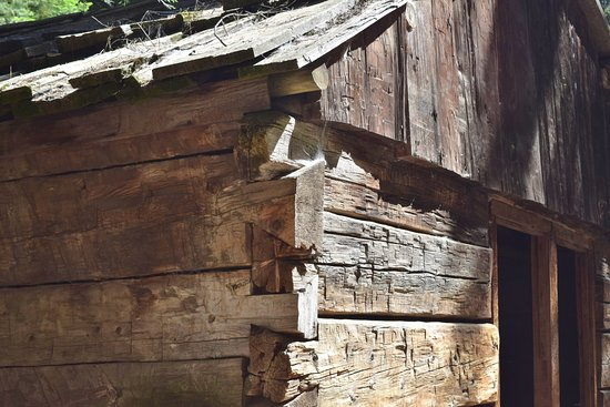 Three Rivers, Kalifornia: Gamlin Cabin detail
