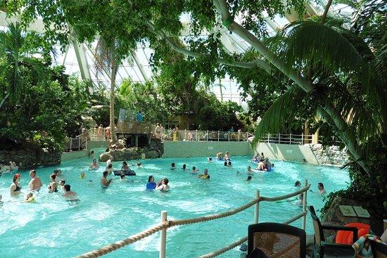 Center Parcs Zwemmen.Zwembad Foto Van Center Parcs De Vossemeren Lommel