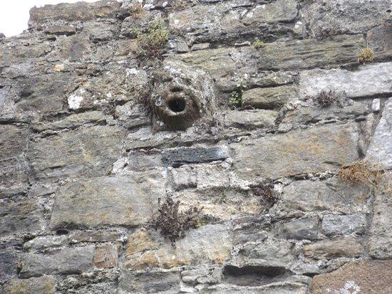 Beaumaris, UK: The only remaining gargoyle