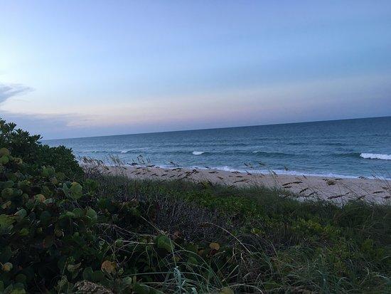 Melbourne Beach-billede