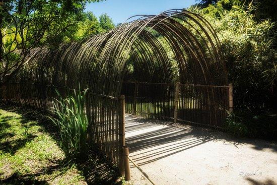 Generargues, Frankrike: Tunnel de bambous