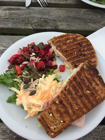 Slaidburn, UK: Tasty ham & cheese toastie with salad.