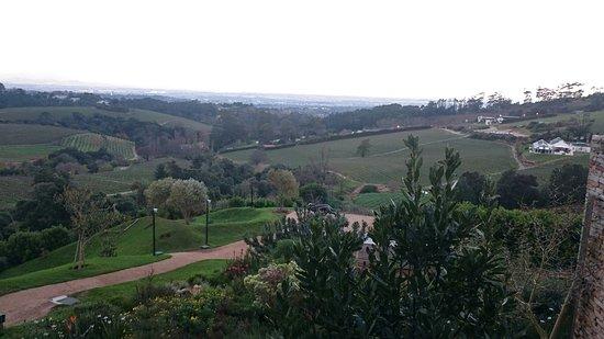 Constantia, Sudáfrica: DSC_0689_large.jpg