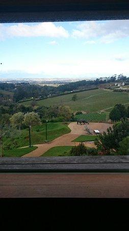 Constantia, Sydafrika: DSC_0688_large.jpg