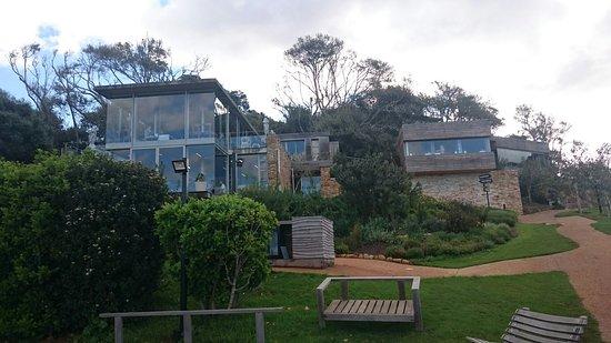 Constantia, Sydafrika: DSC_0684_large.jpg