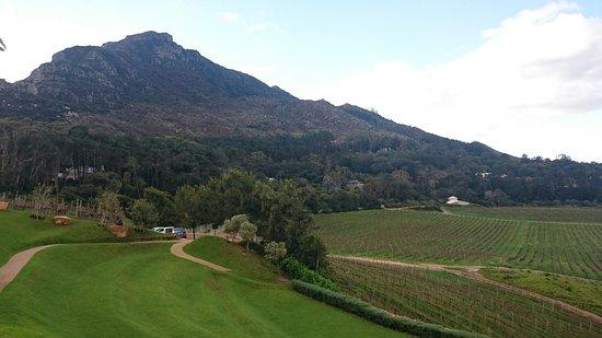 Constantia, Sudáfrica: DSC_0682_large.jpg