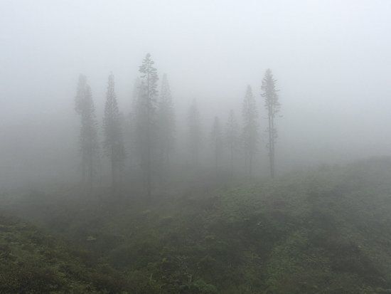 Waihee, ฮาวาย: Cloudy at the top