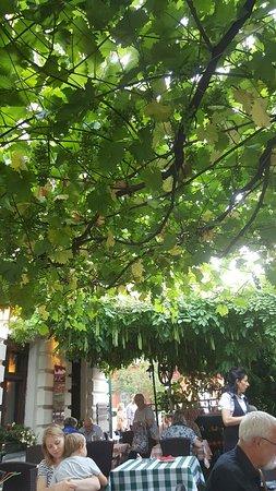 Villa Apostoli: 20160717_193905_large.jpg