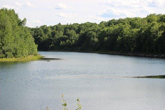 Flat Rock Wildlife Sanctuary