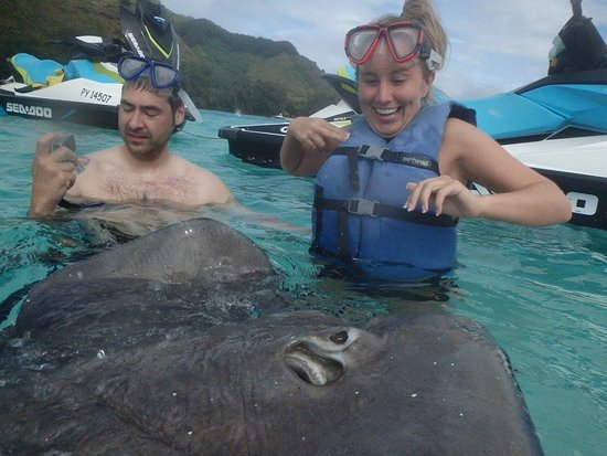 Moorea, Fransız Polinezyası: Ray