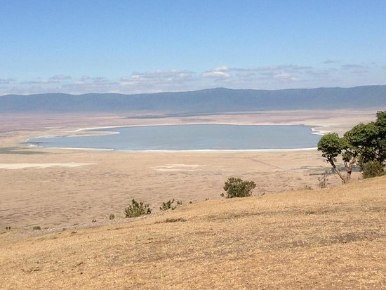 Ngorongoro Sopa Lodge : View of the crater from opposite side to Lodge, where its green and lush.