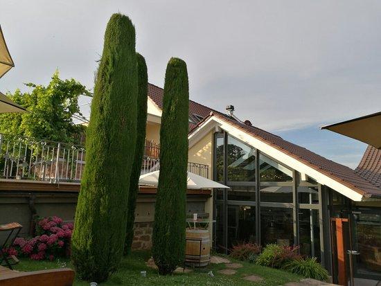 Landau in der Pfalz照片